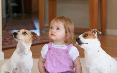 I cani riducono l'ansia nei bambini