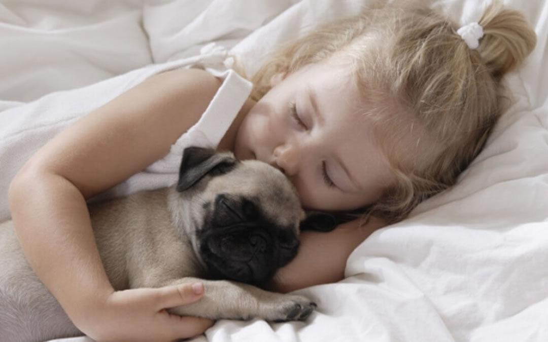 Dormire con il cane fa bene o fa male?