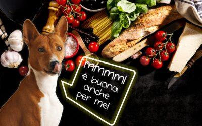 I benefici della dieta mediterranea per il tuo cane