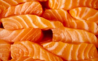 I 4 benefici dell'olio di Salmone